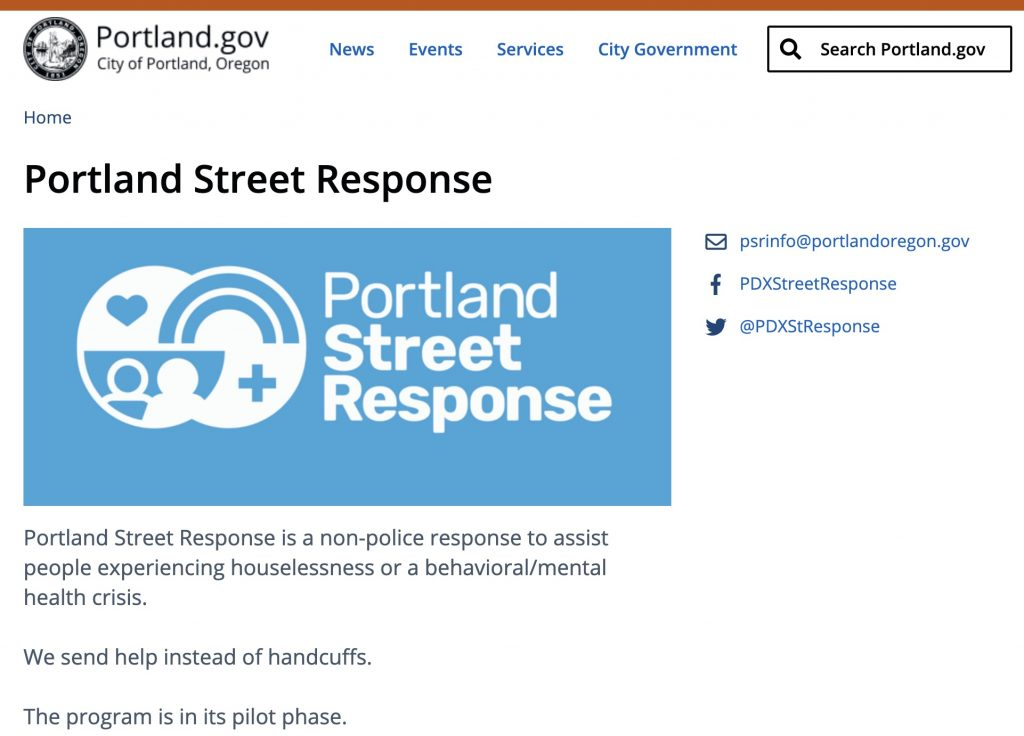 Screen capture of the City's PSR website