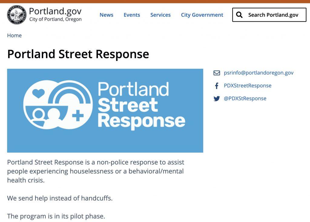 Screen capture of the City's PSR website
